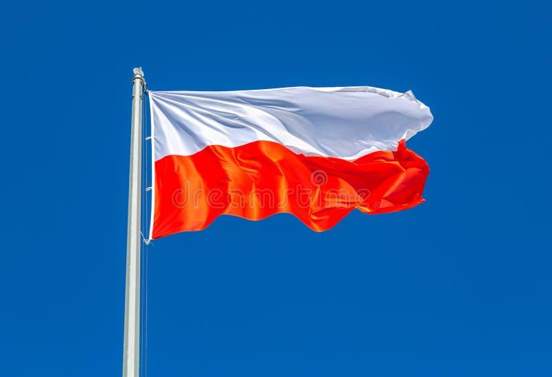 Flaga Polska falowanie w wiatrze przeciw niebu obraz stock