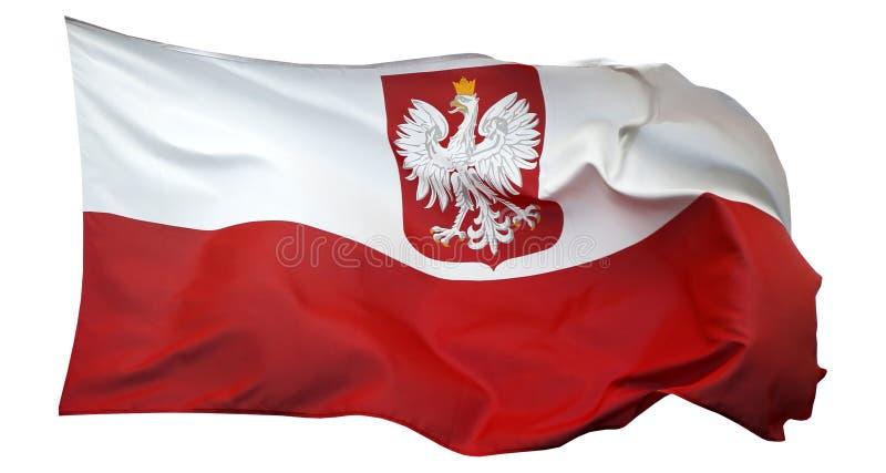 Flaga Polska, odizolowywająca na białym tle fotografia stock