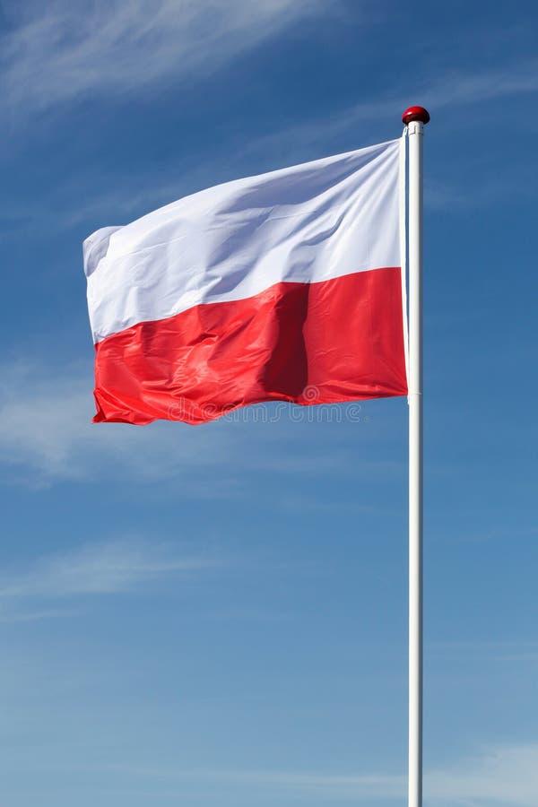 Flaga Polska w niebie zdjęcie stock