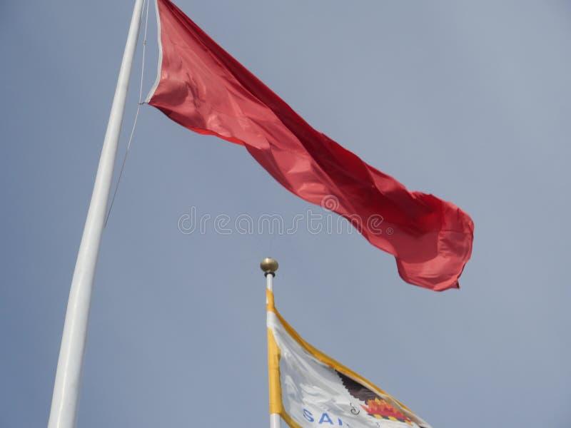 Flaga różni kolory na flagpoles obraz royalty free