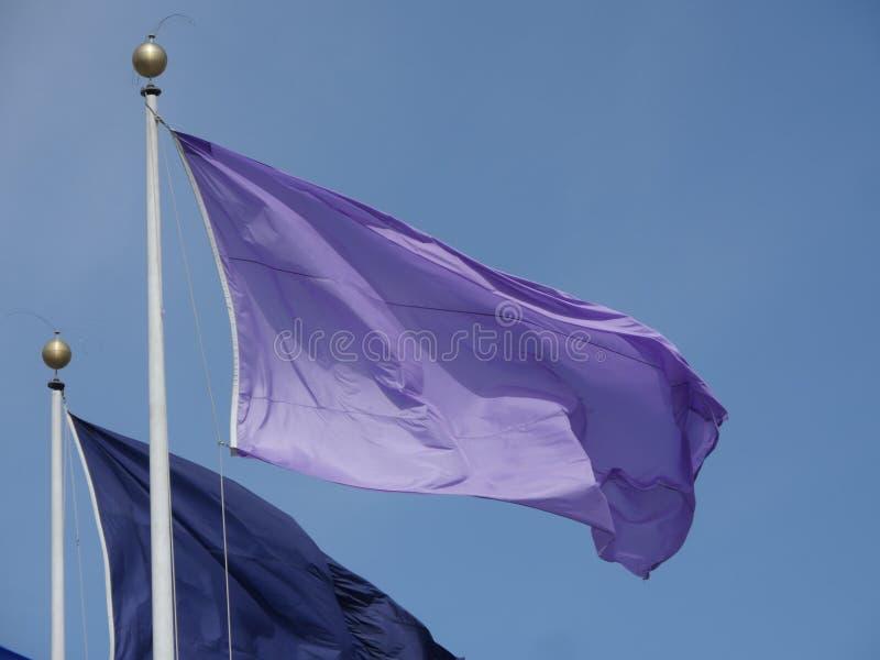 Flaga różni kolory na flagpoles zdjęcia royalty free
