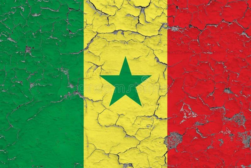 Flaga Senegal malowa? na krakingowym brudzi ?cian? Obywatela wz?r na rocznika stylu powierzchni royalty ilustracja