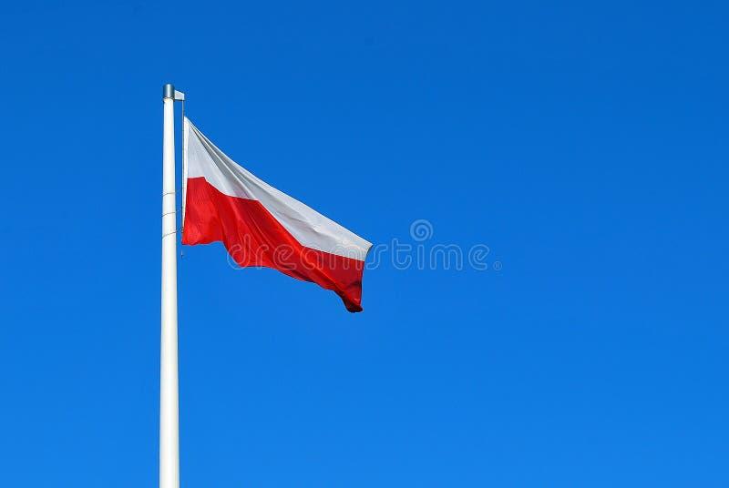 flaga shine obraz stock