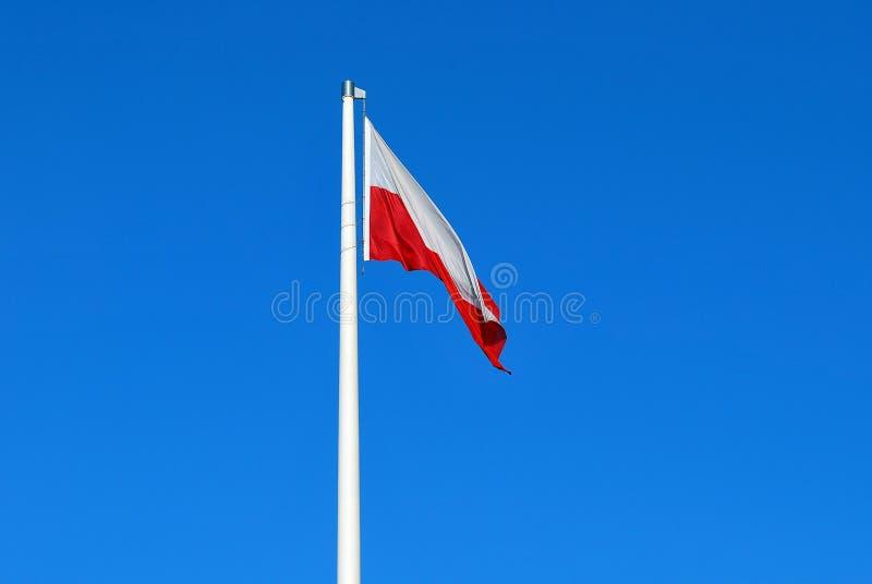 flaga shine fotografia royalty free
