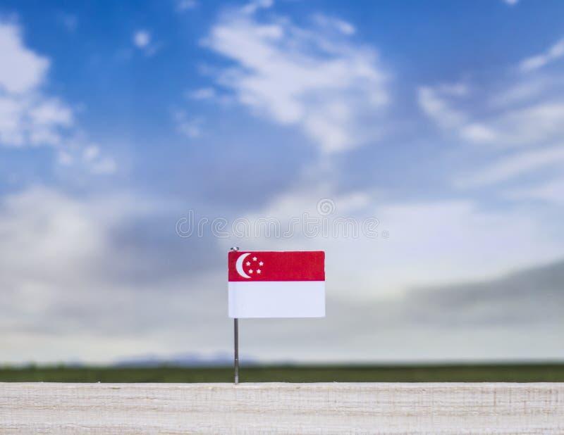 Flaga Singapur z szeroką łąką i niebieskim niebem za nim obrazy stock