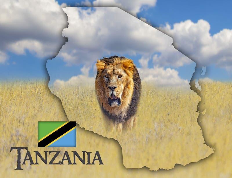 Flaggaöversikt av Tanzania som är på en bild av ett lejon Det finns texten av Tanzania och flaggan Det finns det  royaltyfri fotografi