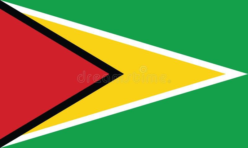 Flagga av den Guyana vektorillustrationen royaltyfri illustrationer