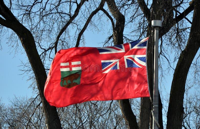 Flagga av det Manitoba landskapet royaltyfri bild