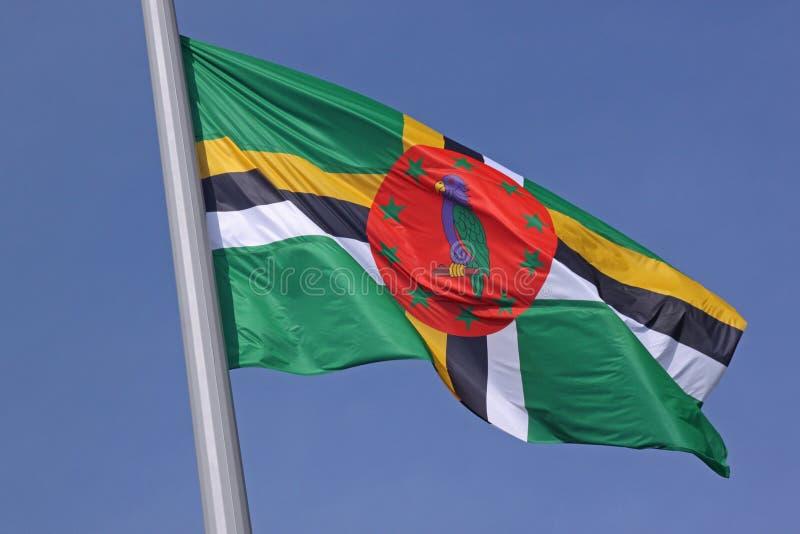 Flagga av Dominica fotografering för bildbyråer