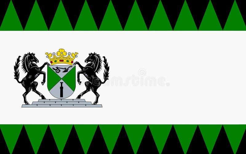 Flagga av Emmen av Nederländerna royaltyfri bild
