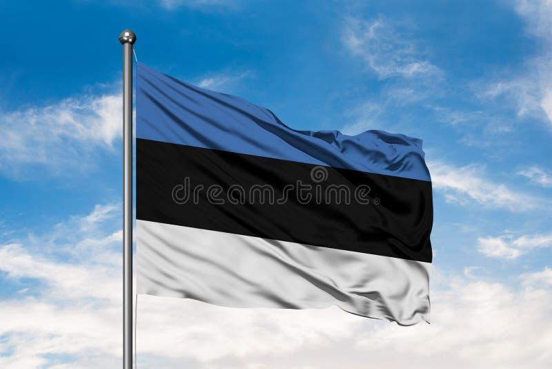 Flagga av Estland som vinkar i vinden mot vit molnig blå himmel estonian flagga arkivfoto