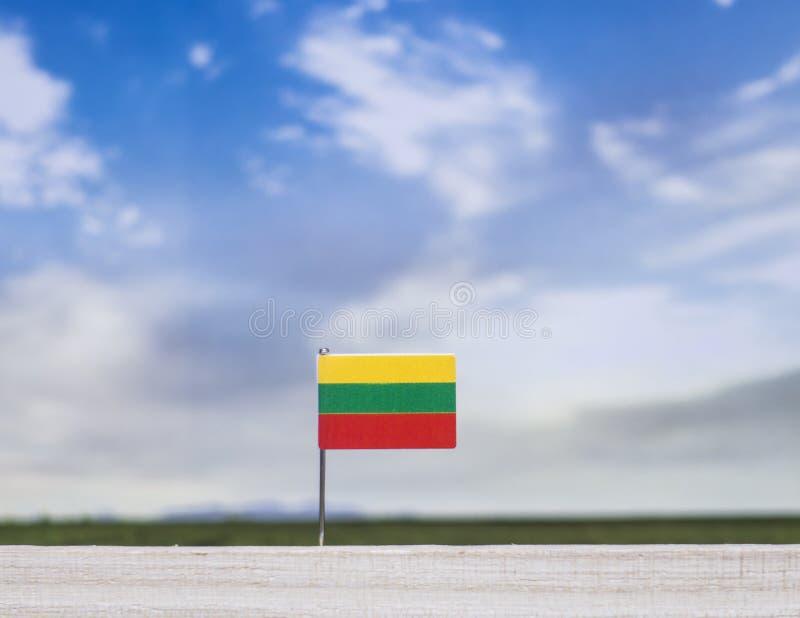 Flagga av Litauen med den vidsträckta ängen och blå himmel bak den arkivfoto