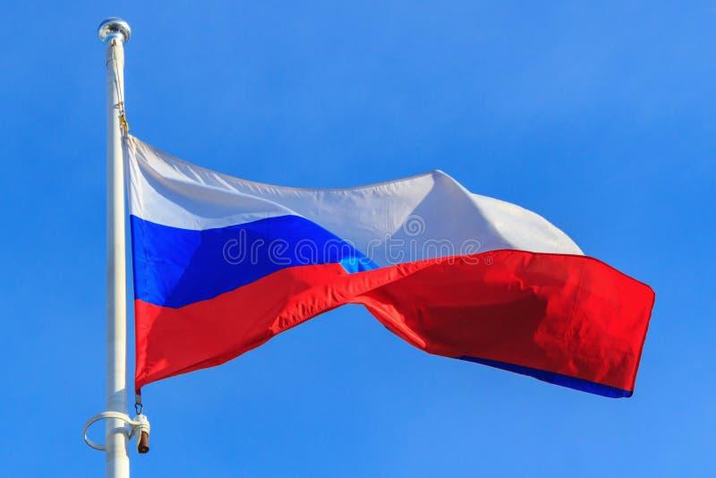 Flagga av rysk federation på bakgrunden för blå himmel flags den blåa flaggan för bakgrund våg för den ramguldrussia vektorn royaltyfria bilder