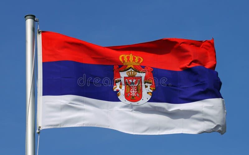 Flagga av Serbien royaltyfri foto
