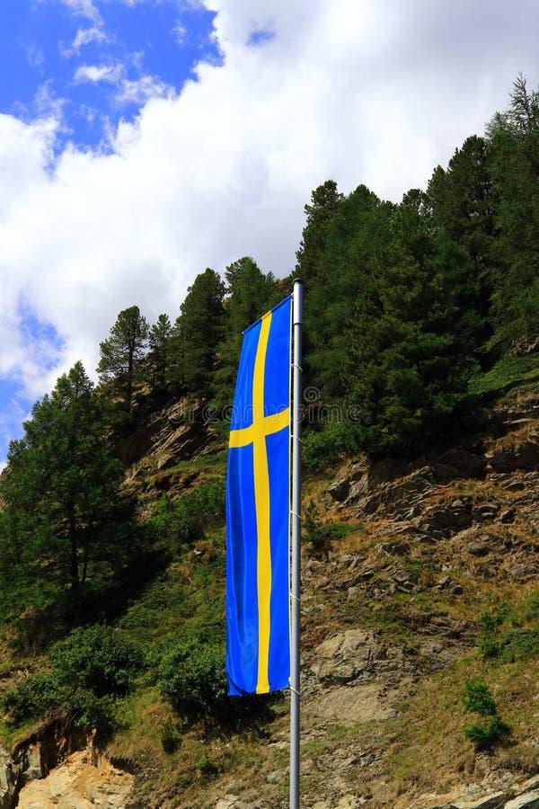 Flagga av Sverige mot bakgrund för skog och för blå himmel arkivbild