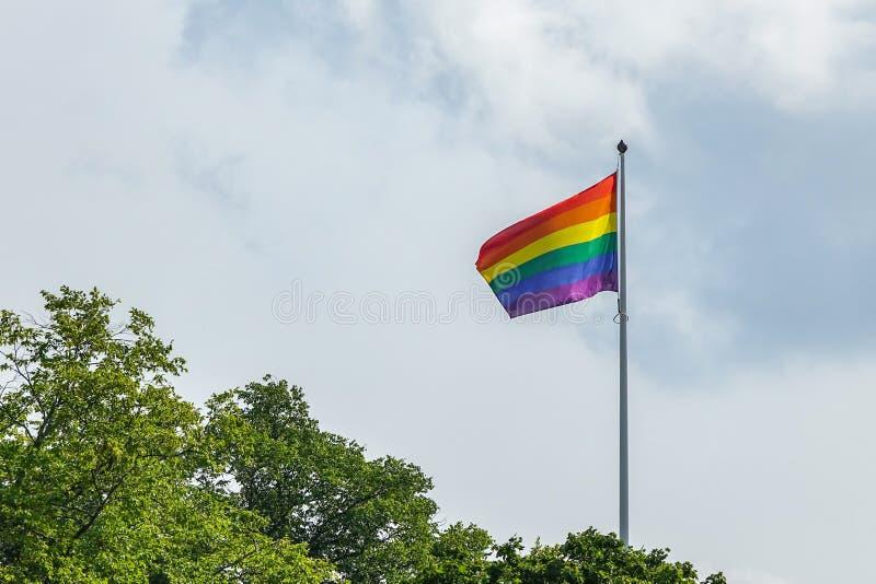 Flagga för glad stolthet för regnbåge i grönt landskap royaltyfri bild
