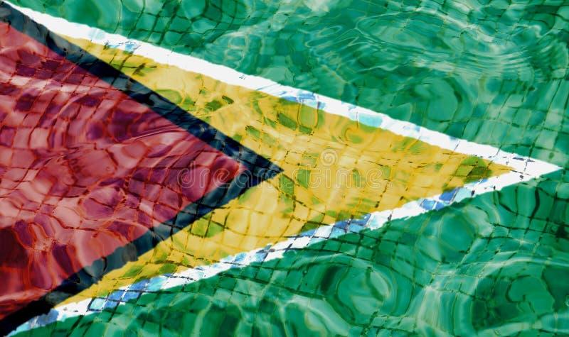 flagga guyana royaltyfria foton