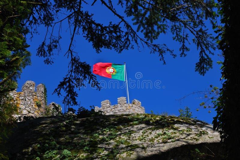 flagga portugal s royaltyfri bild