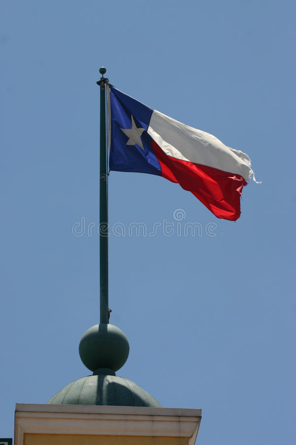 flagga texas royaltyfri fotografi