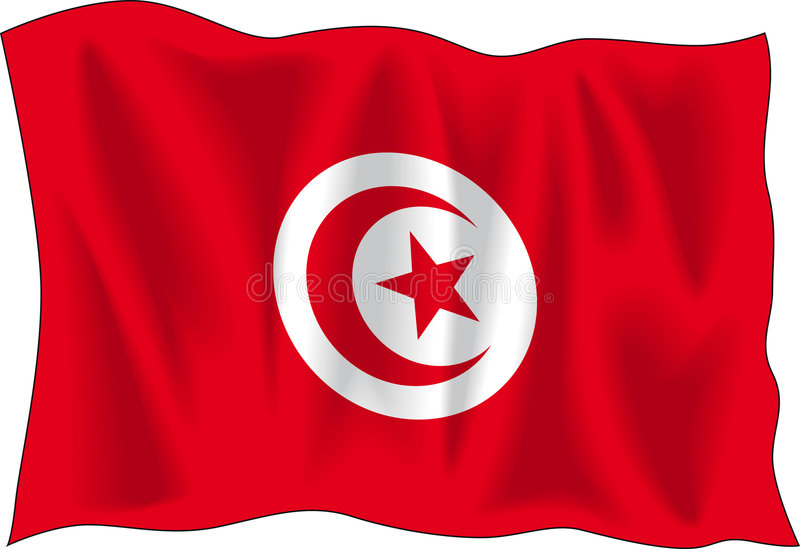 flagga tunisia vektor illustrationer