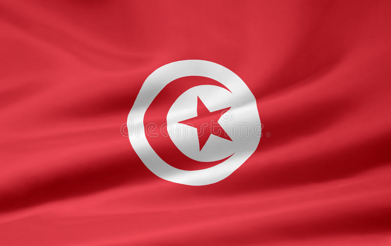 flagga tunisia vektor illustrationer