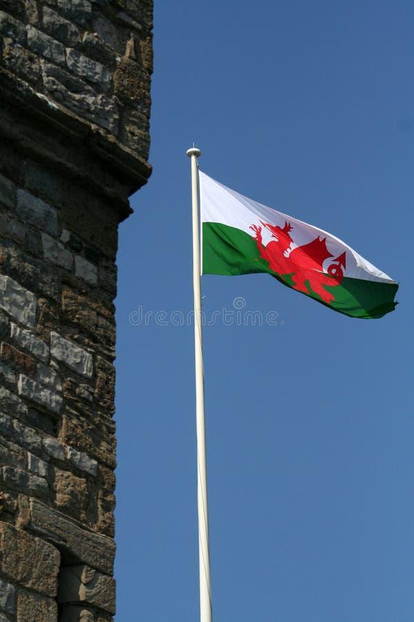 flagga welsh royaltyfria bilder