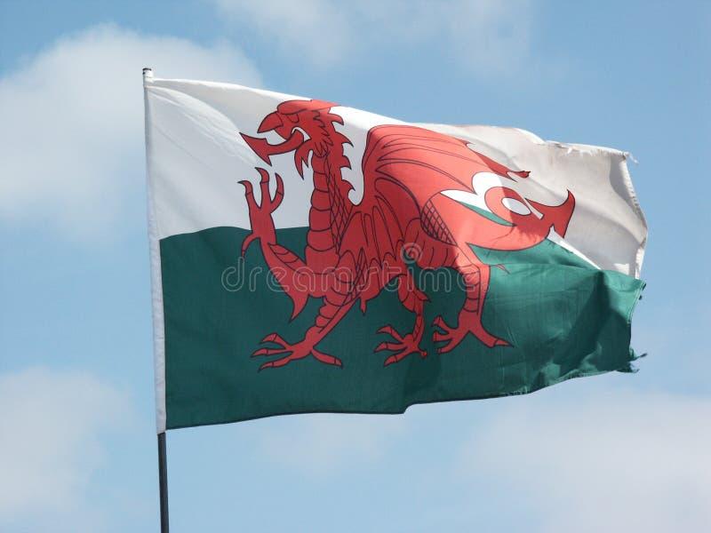 flaggaflyg welsh royaltyfri foto