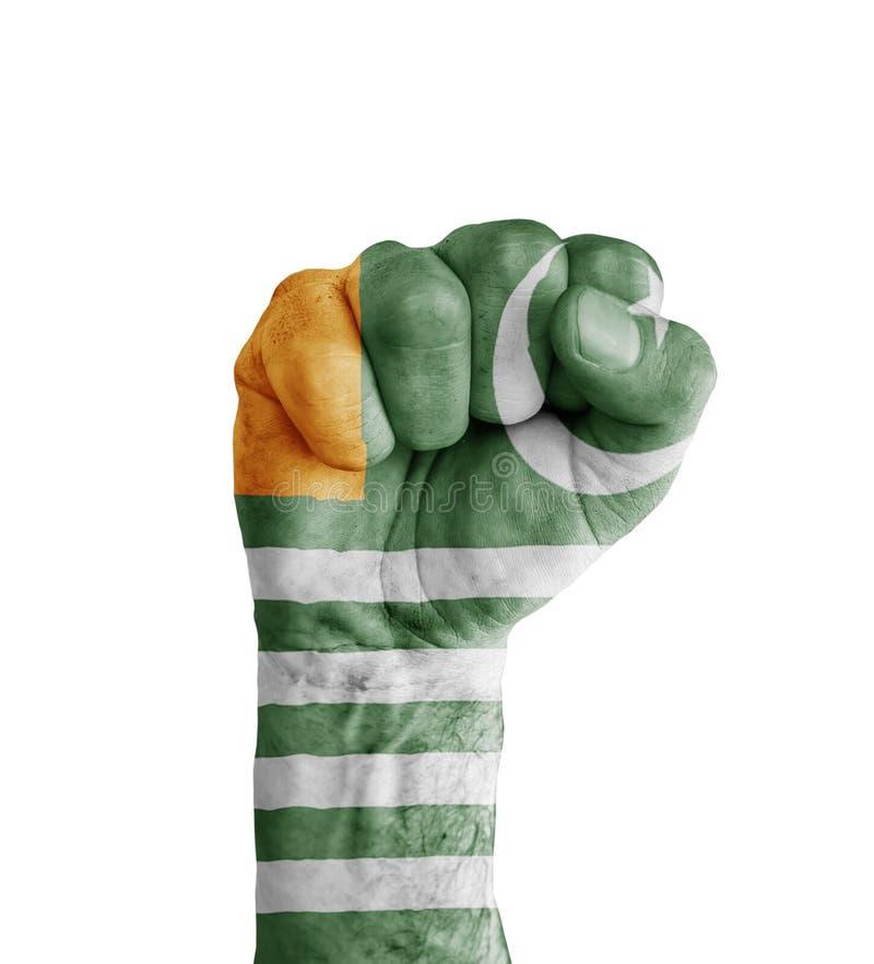 Flaggan av Azad Kashmir målade på den mänskliga näven som segersymbol arkivfoton