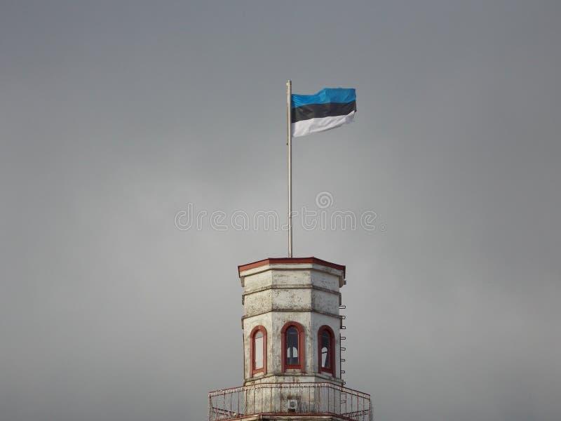 Flaggan av Estland i den baltiska himlen fotografering för bildbyråer