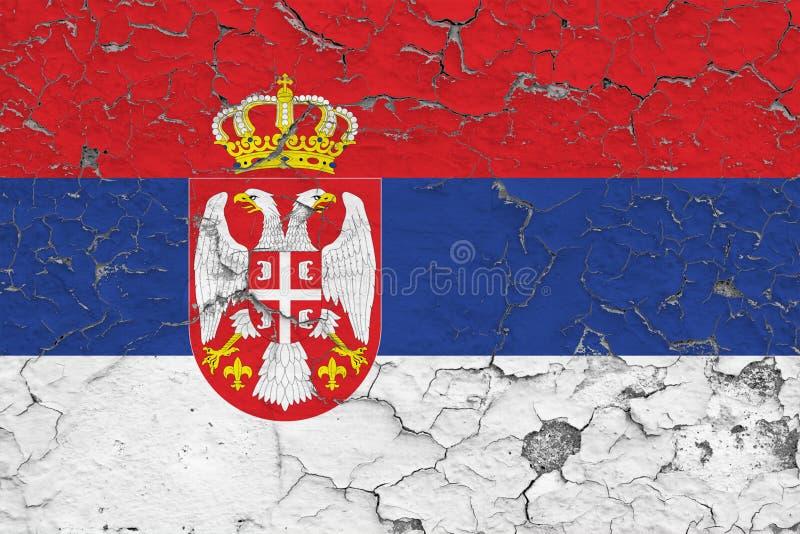 Flaggan av Serbien målade på den spruckna smutsiga väggen Nationell modell p? tappningstilyttersida royaltyfri illustrationer