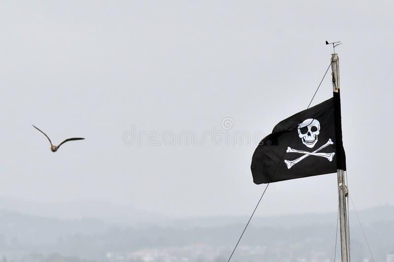 flaggan piratkopierar royaltyfri foto