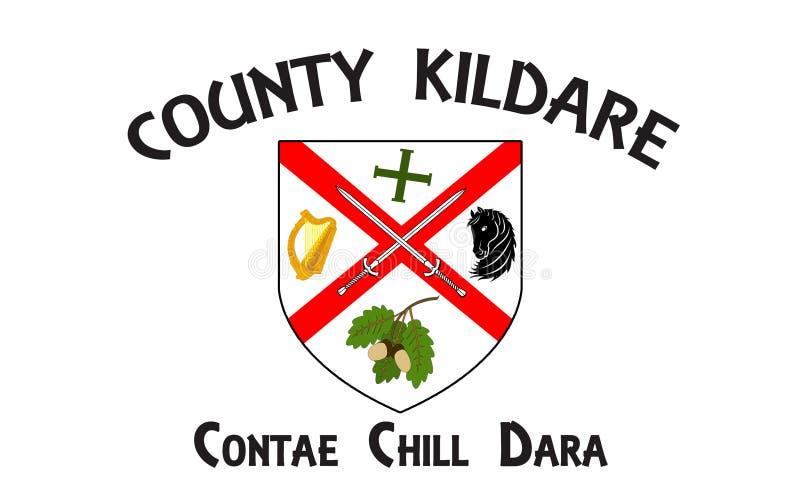 Flagge der Grafschaft Kildare ist eine Grafschaft in Irland lizenzfreie abbildung