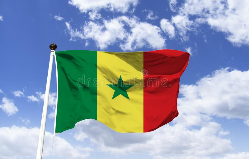 Flagge der Republik Senegal lizenzfreies stockbild
