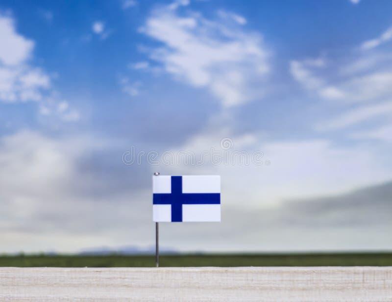 Flagge von Finnland mit beträchtlicher Wiese und blauem Himmel hinter ihm lizenzfreies stockfoto