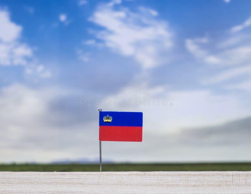 Flagge von Liechtenstein mit beträchtlicher Wiese und blauem Himmel hinter ihm lizenzfreie stockfotos