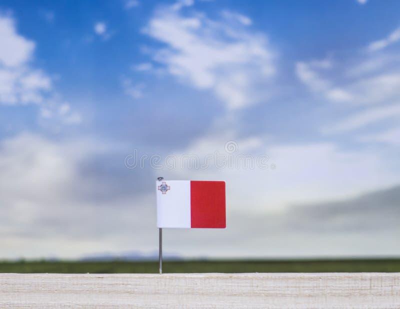 Flagge von Malta mit beträchtlicher Wiese und blauem Himmel hinter ihm lizenzfreies stockbild