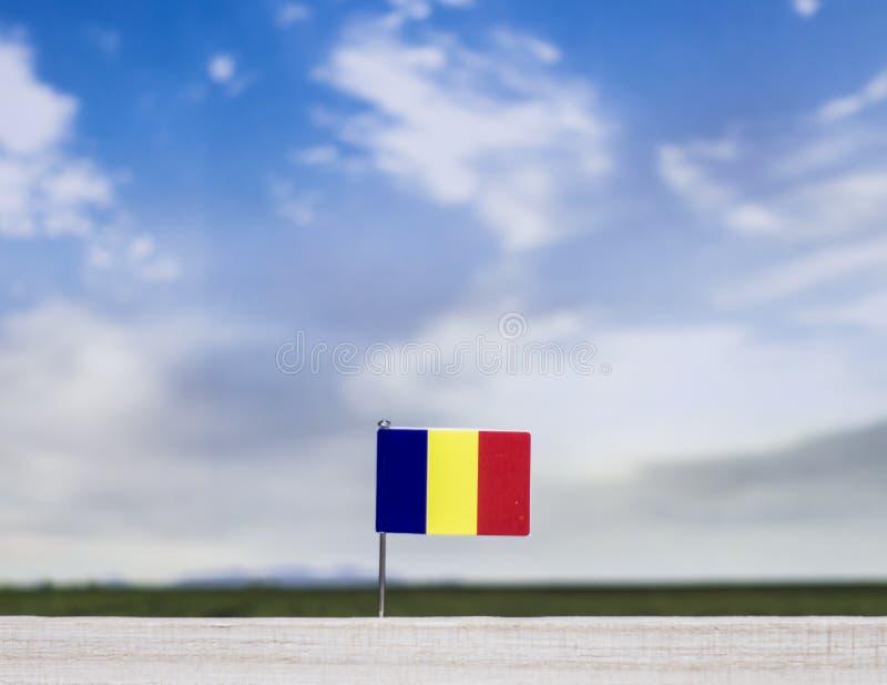 Flagge von Rumänien mit beträchtlicher Wiese und blauem Himmel hinter ihm lizenzfreies stockfoto