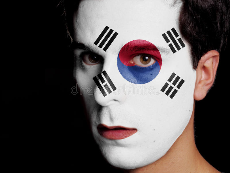 Flagge von Südkorea lizenzfreies stockbild