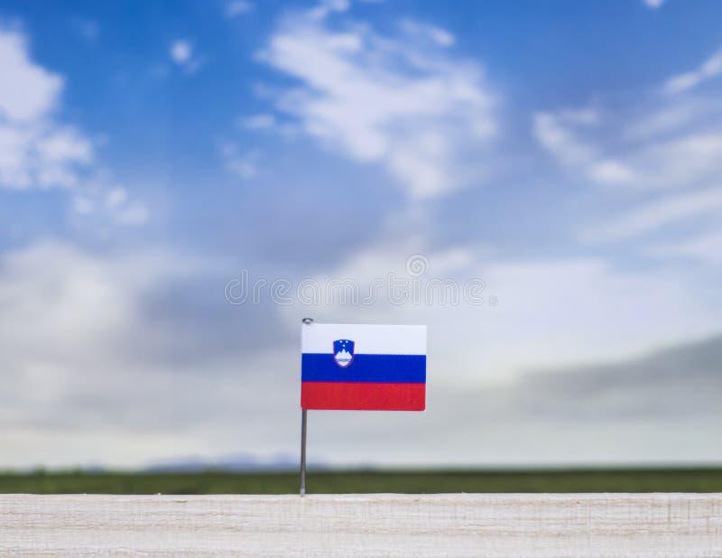 Flagge von Slowenien mit beträchtlicher Wiese und blauem Himmel hinter ihm stockfotografie