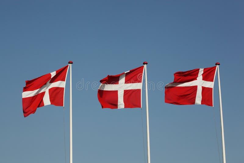 Flaggor av Danmark arkivfoton