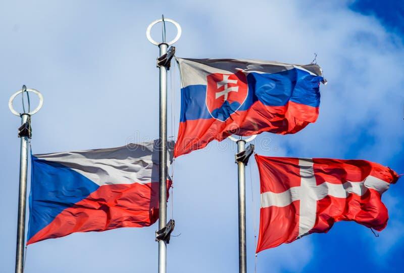 Flaggor av europeiska länder royaltyfria foton
