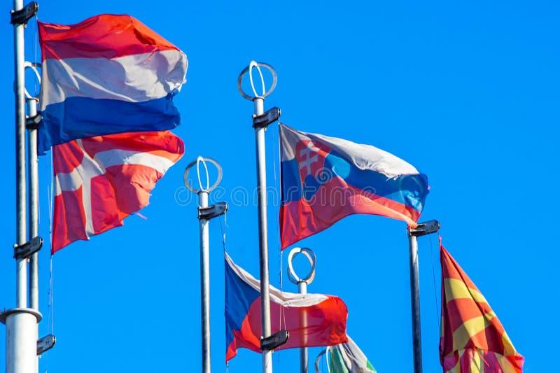 Flaggor av europeiska länder arkivbild