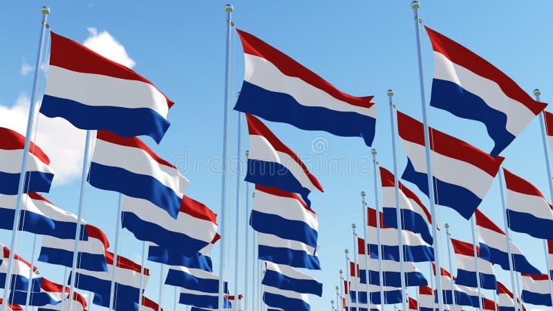 Flaggor av Nederländerna som vinkar i vinden mot blå himmel royaltyfri illustrationer