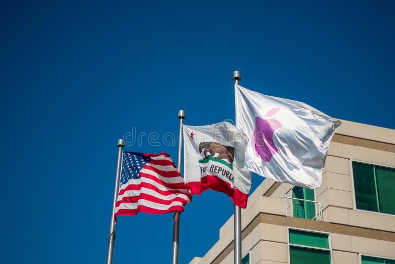 Flaggor på den Apple företagsuniversitetsområdet i silikondalen, oändlighetsögla en arkivfoton