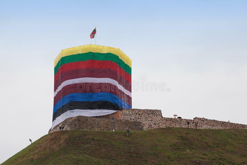 Flaggor runt om det Gediminas tornet royaltyfri foto