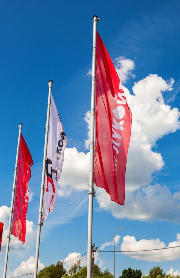 Flaggorna av oljebolaget Lukoil på bensinstationen Lukoil I royaltyfria foton