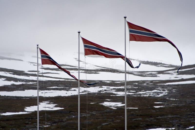 flagi obraz royalty free