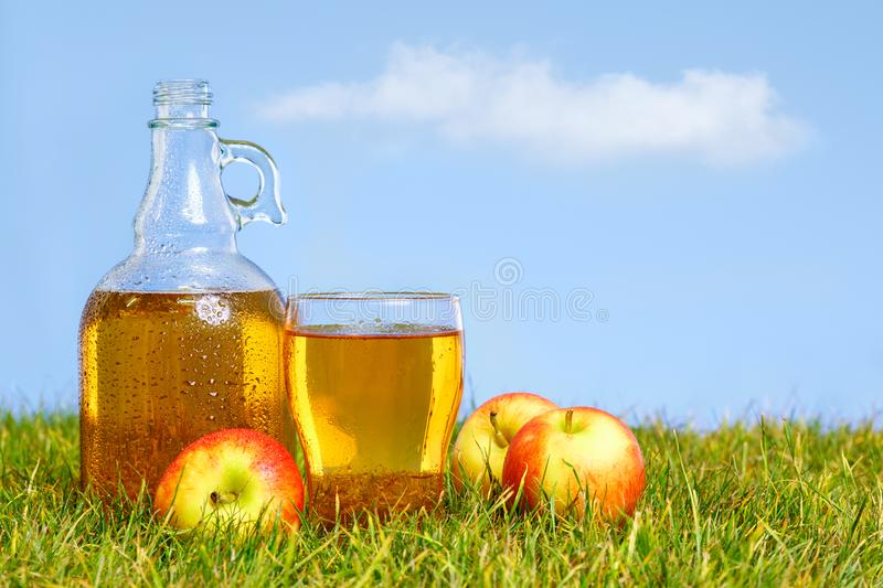 Flagon and pint of apple cider stock image