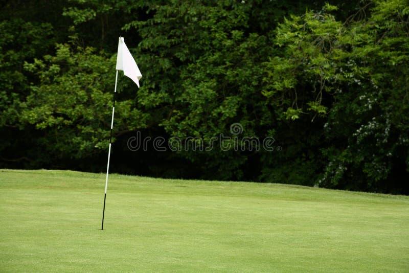 Flagpole di golf fotografia stock