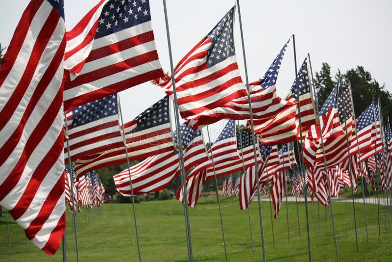 flags сеть вектора США иллюстрации стоковое изображение